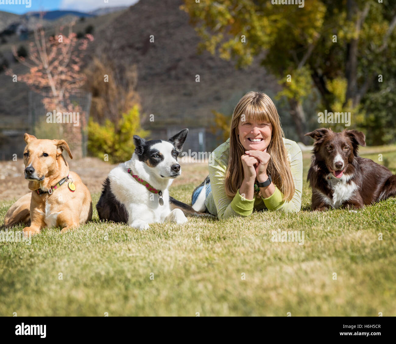Outdoor portrait of attractive woman with her three dogs on a grassy field - Stock Image