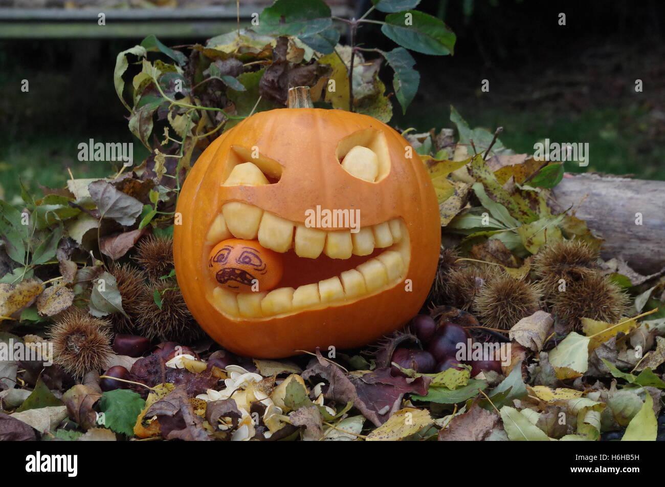 Pumpkin carving u the euclid boo
