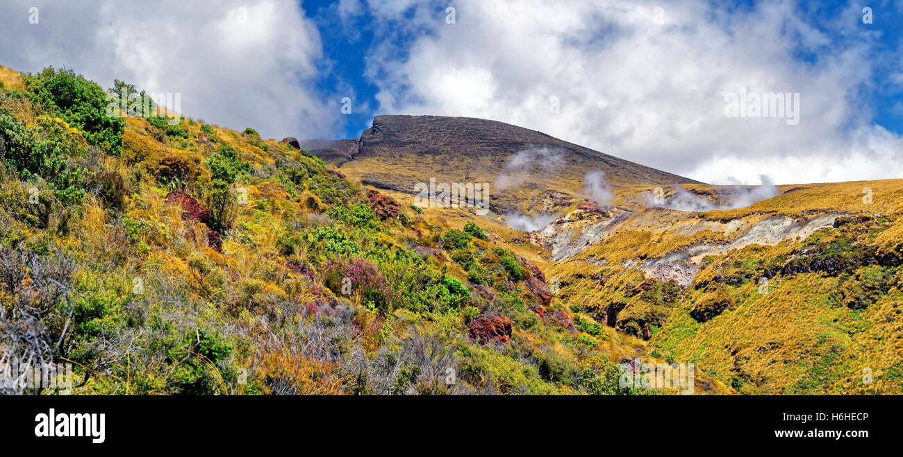 Smoke and steam plume at the Ketetahi Springs on volcanically active northern slope of Mount Tongariro, Tongariro - Stock Image