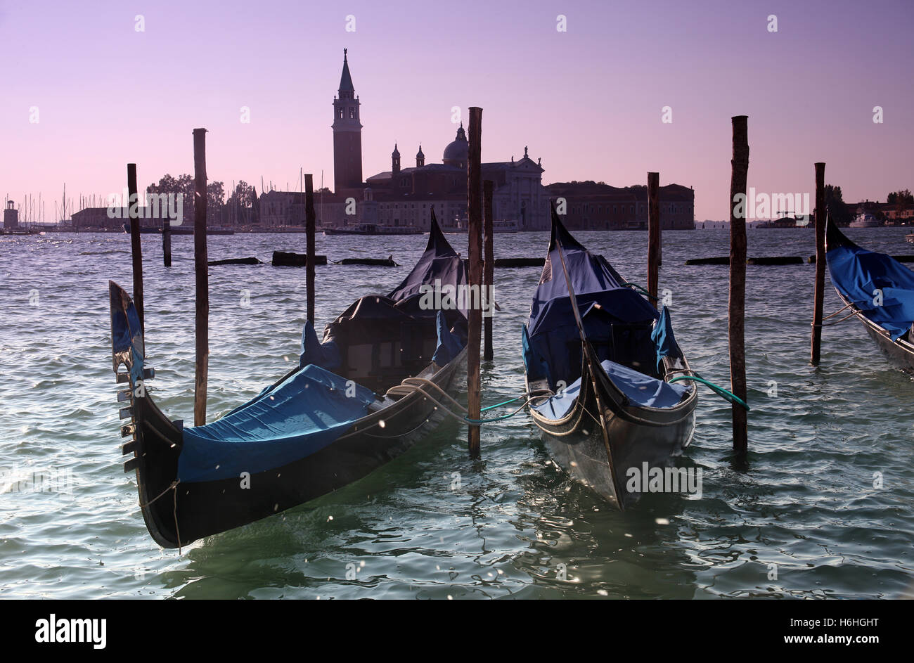 The iconic gondolas of Venice Italy moored in the Bacino San Marco - Stock Image