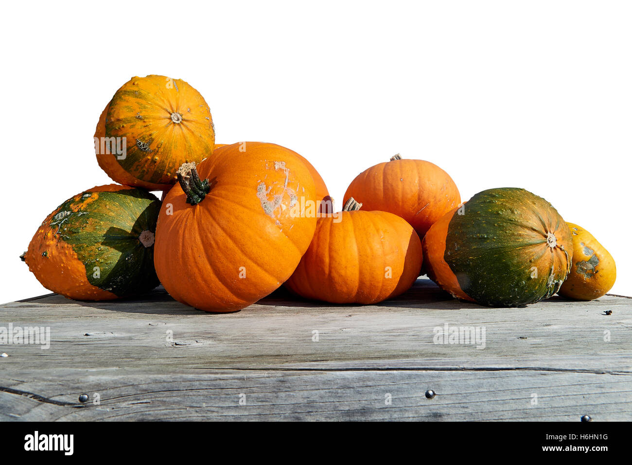 Assorted pumpkins and squashes on rustic wooden boards Stock Photo