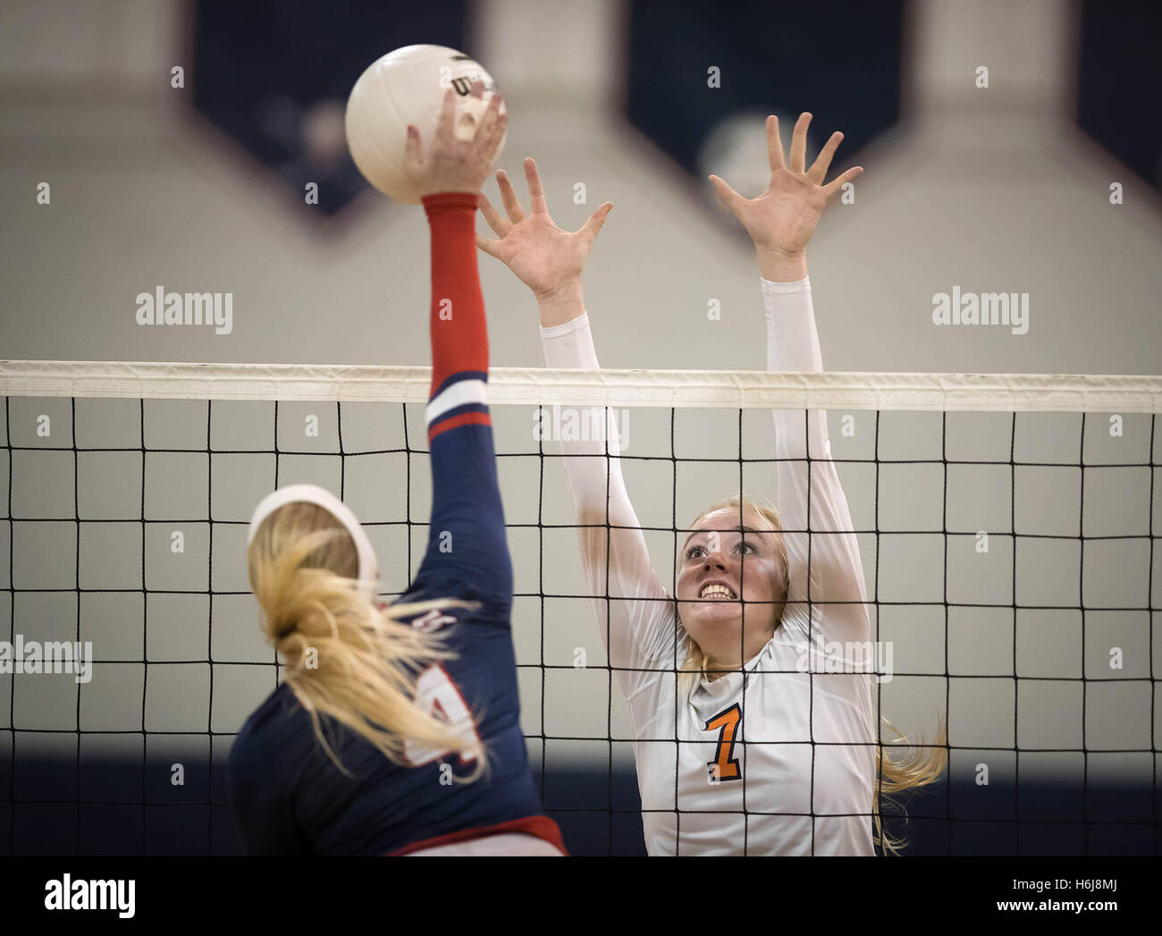 Palm Beach Gardens, Florida, USA. 29th Oct, 2016. Benjamin Buccaneers Emma Lange (7) attempts to block a shot by Stock Photo
