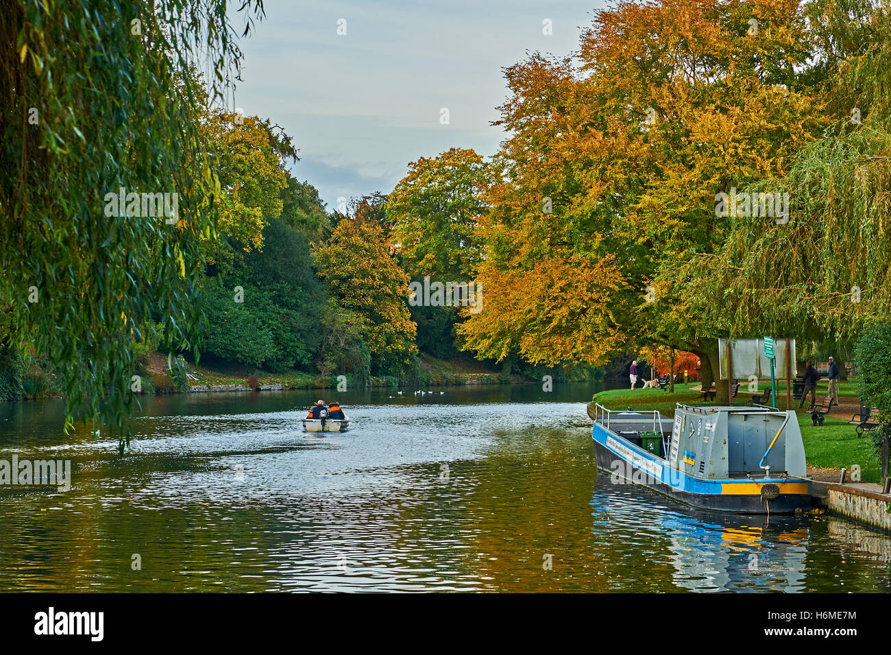 Autumnal colours on trees lining the riverbank in Stratford upon AVON - Stock Image