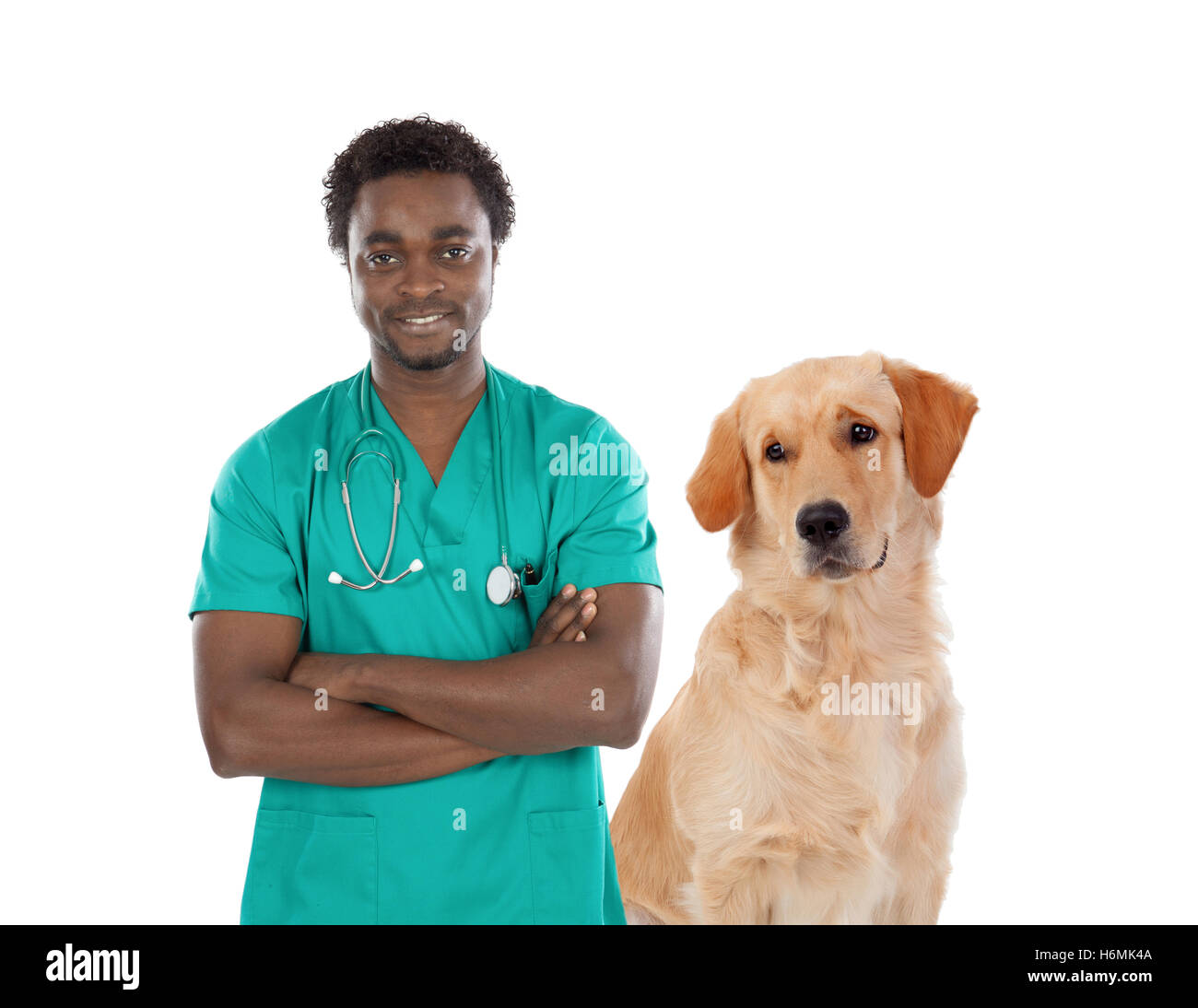 Labrador dog with african veterinarian isolated on a white background - Stock Image