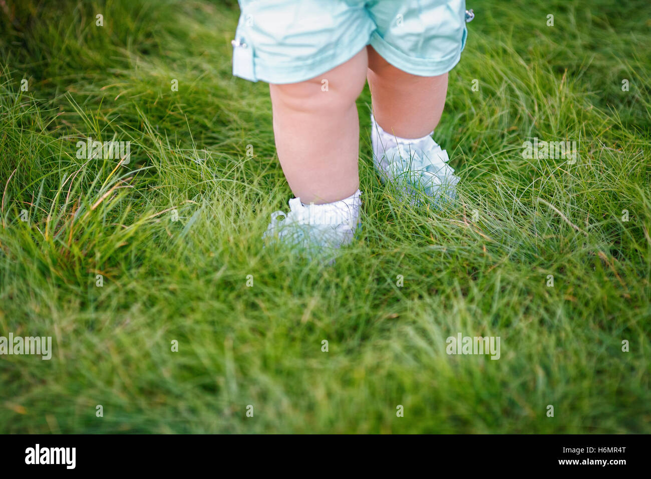 First steps of little girl in summer park on grass - Stock Image
