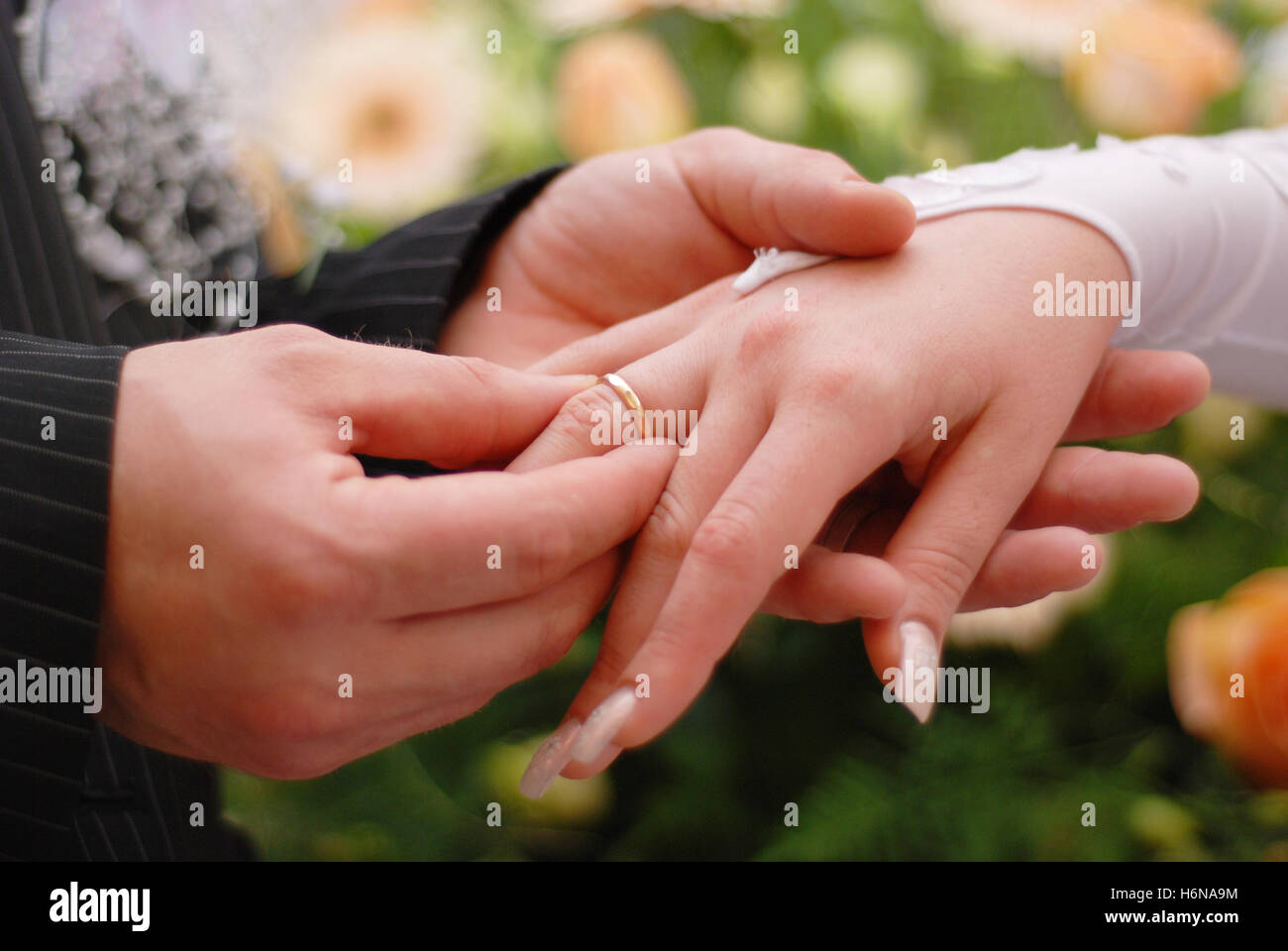 ring handover - Stock Image