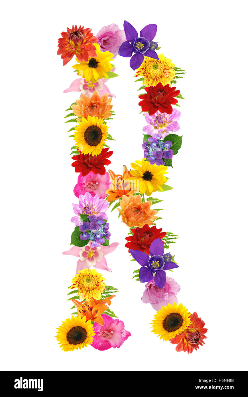Letter r flowers stock photos letter r flowers stock images alamy r stock image altavistaventures Choice Image