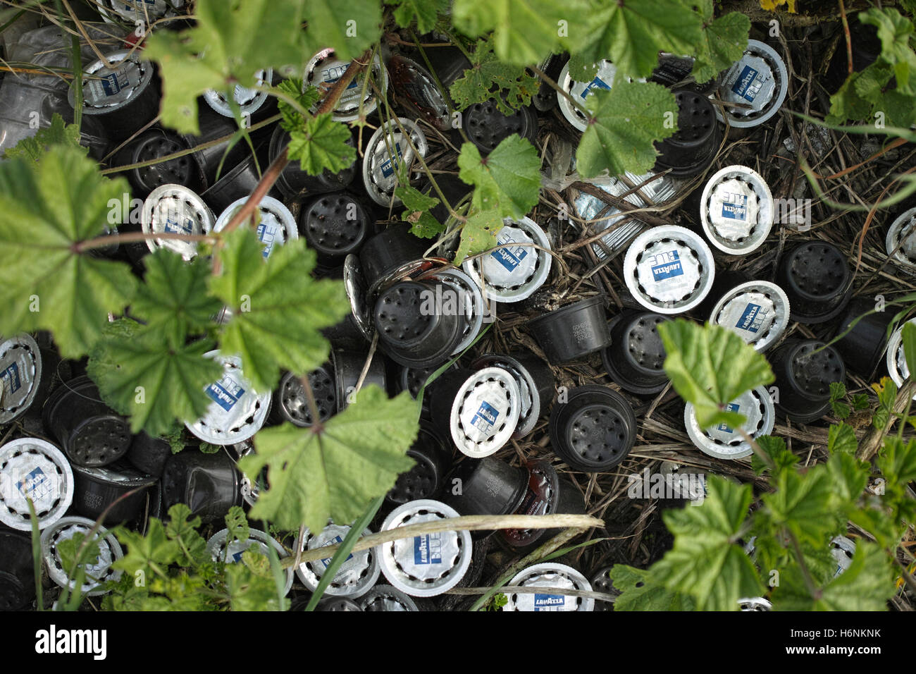 Discarded coffee capsules made of plastic and aluminium amongst the undergrowth. - Stock Image