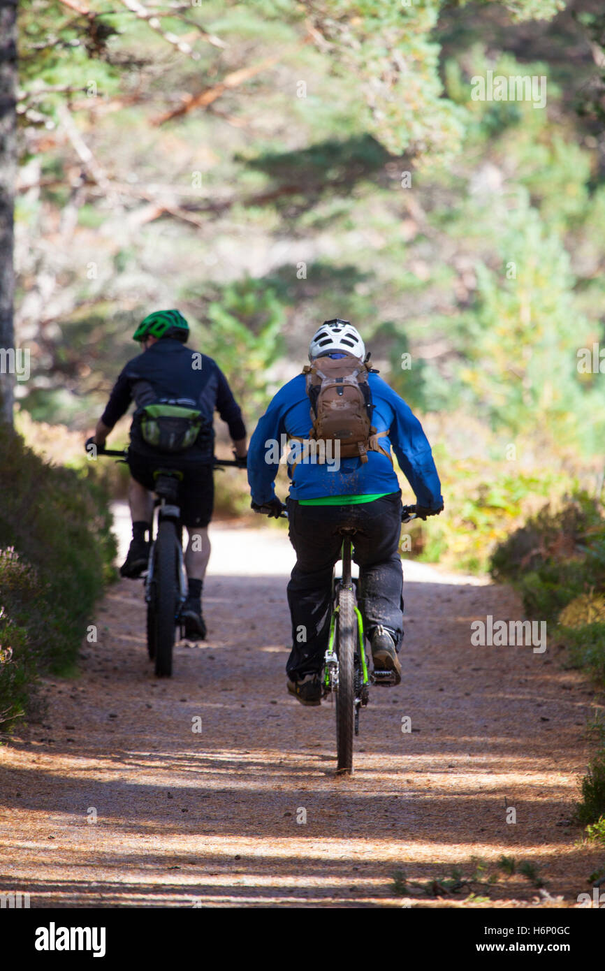Two mountain bikers enjoying the trail towards Lairig Ghru in the Scottish Highlands on the Rothiemurchus Estate, - Stock Image