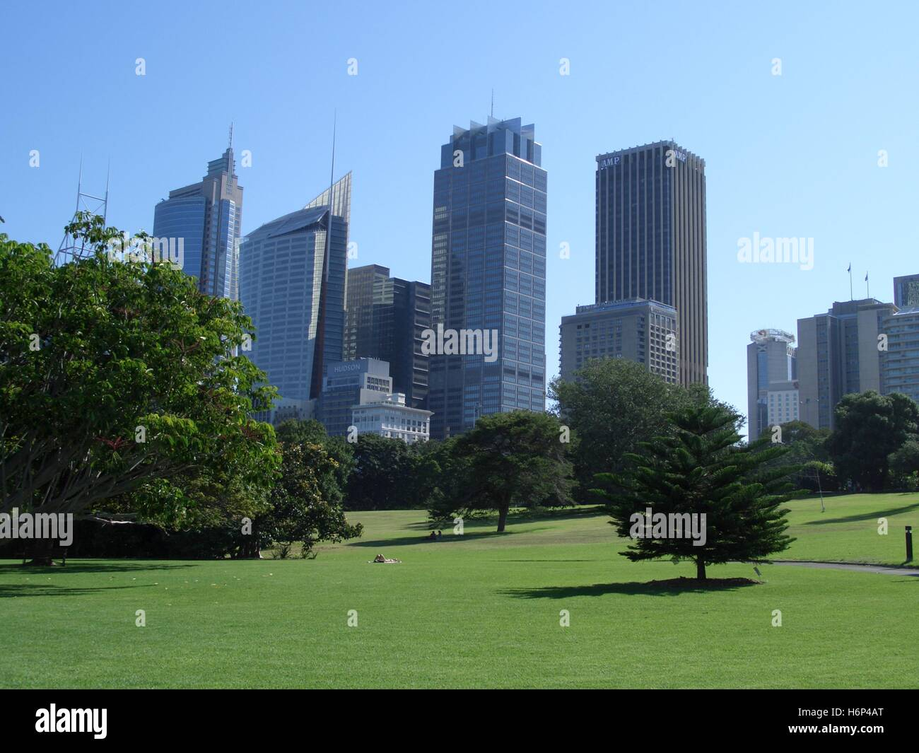 botanical garden with skyscrapers - Stock Image
