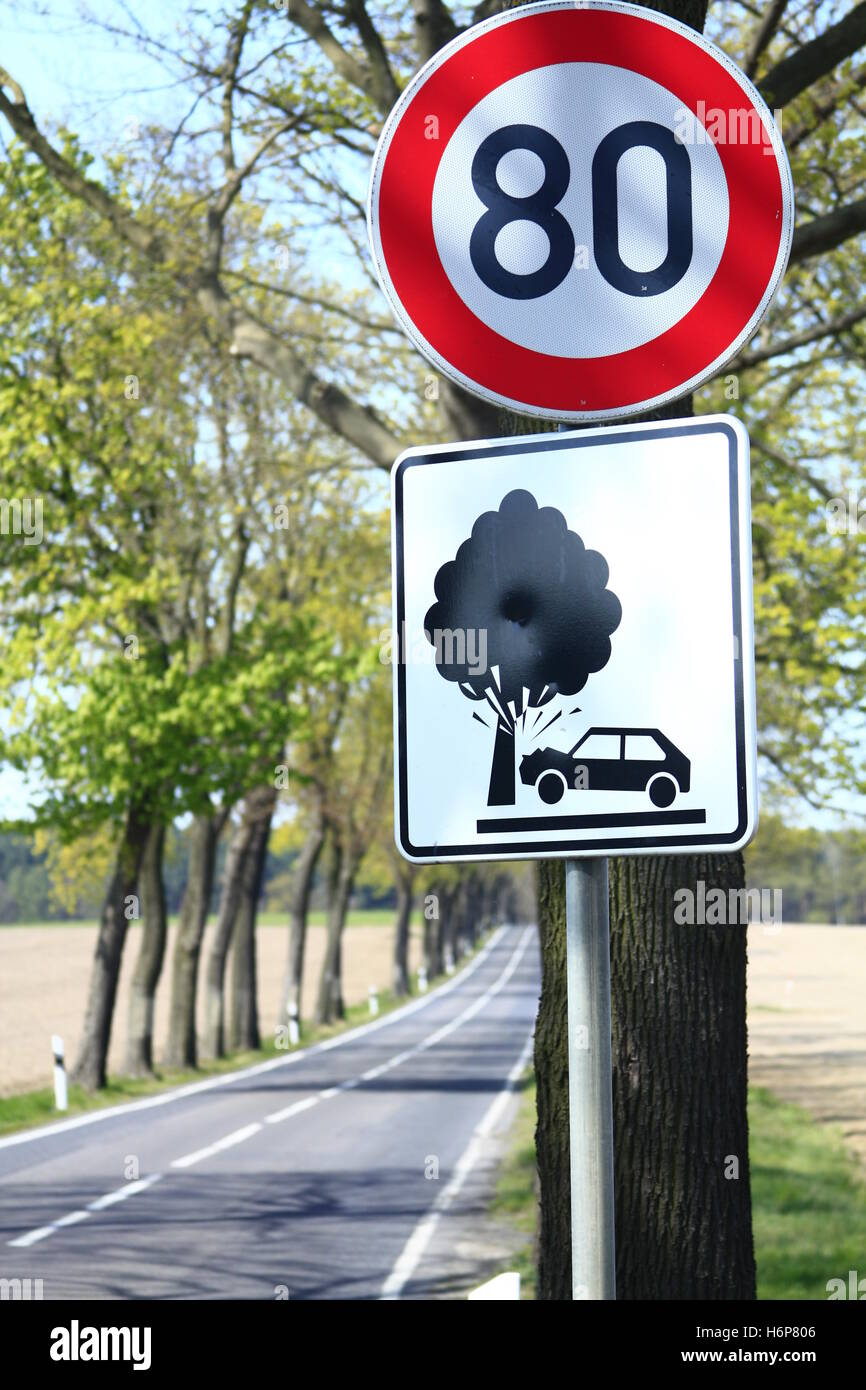 cause accidents avenue trees - Stock Image