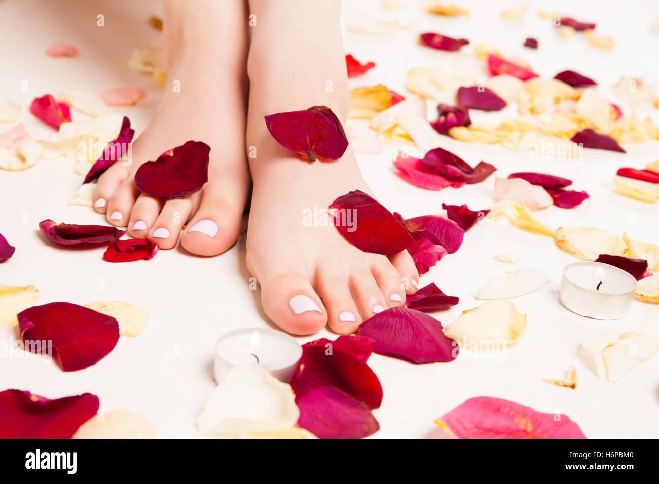 Female soft feet in rose petals Stock