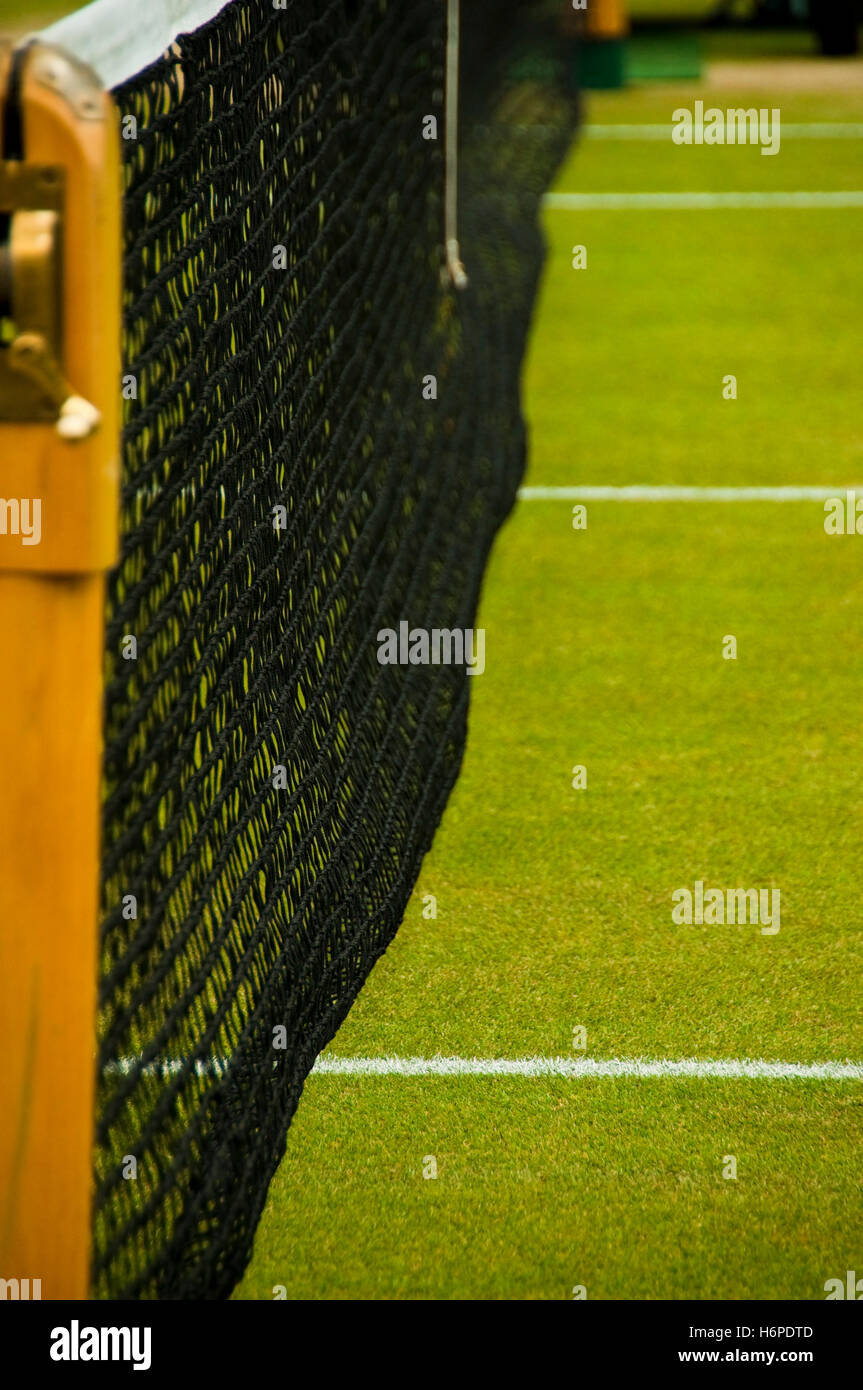 sport sports net competition tennis lawn green court detail spare