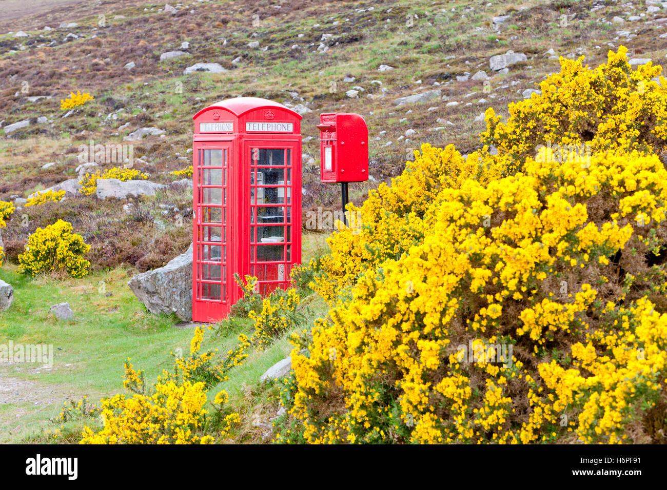 telephone box phonebooth telephone kiosk telephone booth telephone phone flora europe spring bouncing bounces hop - Stock Image