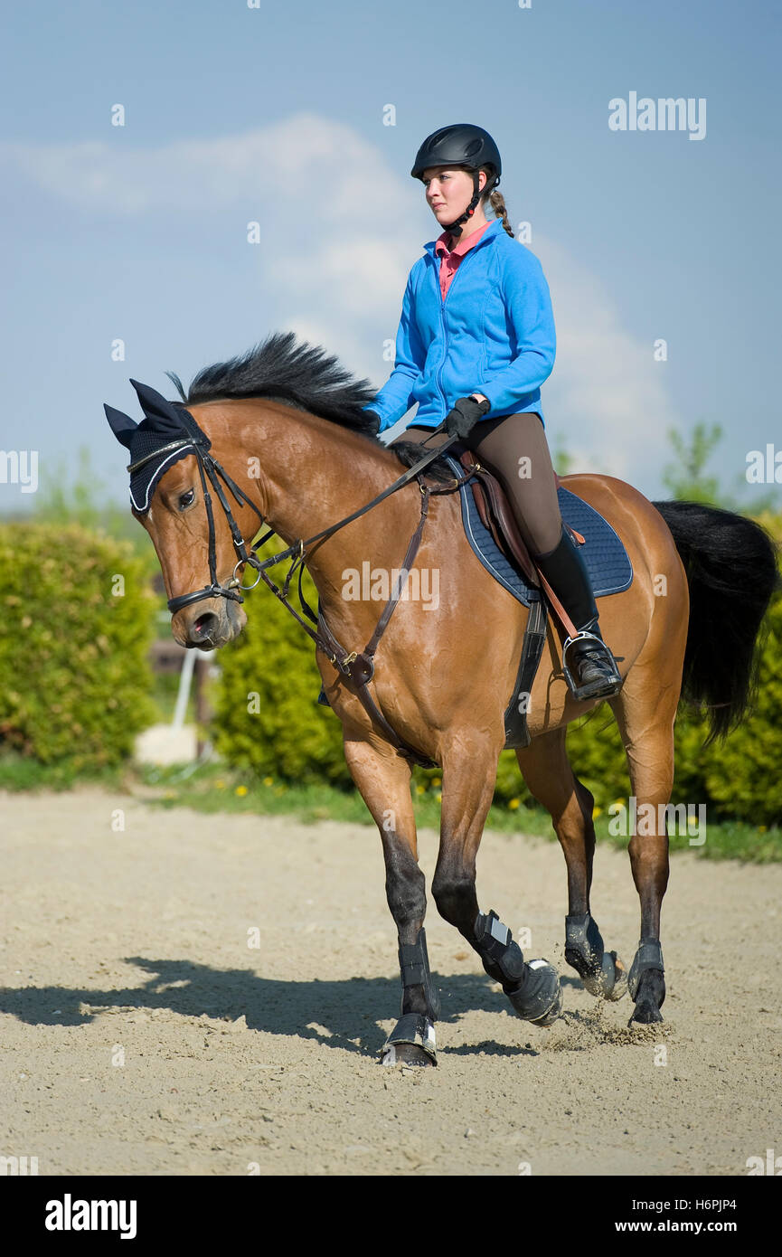 ride horse spring bouncing bounces hop skipping frisks jumping jump horseriding woman spare time free time leisure - Stock Image