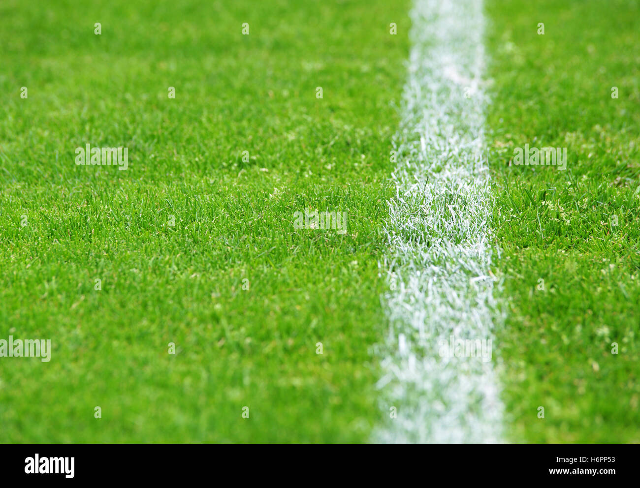 football turf sidelines right - Stock Image