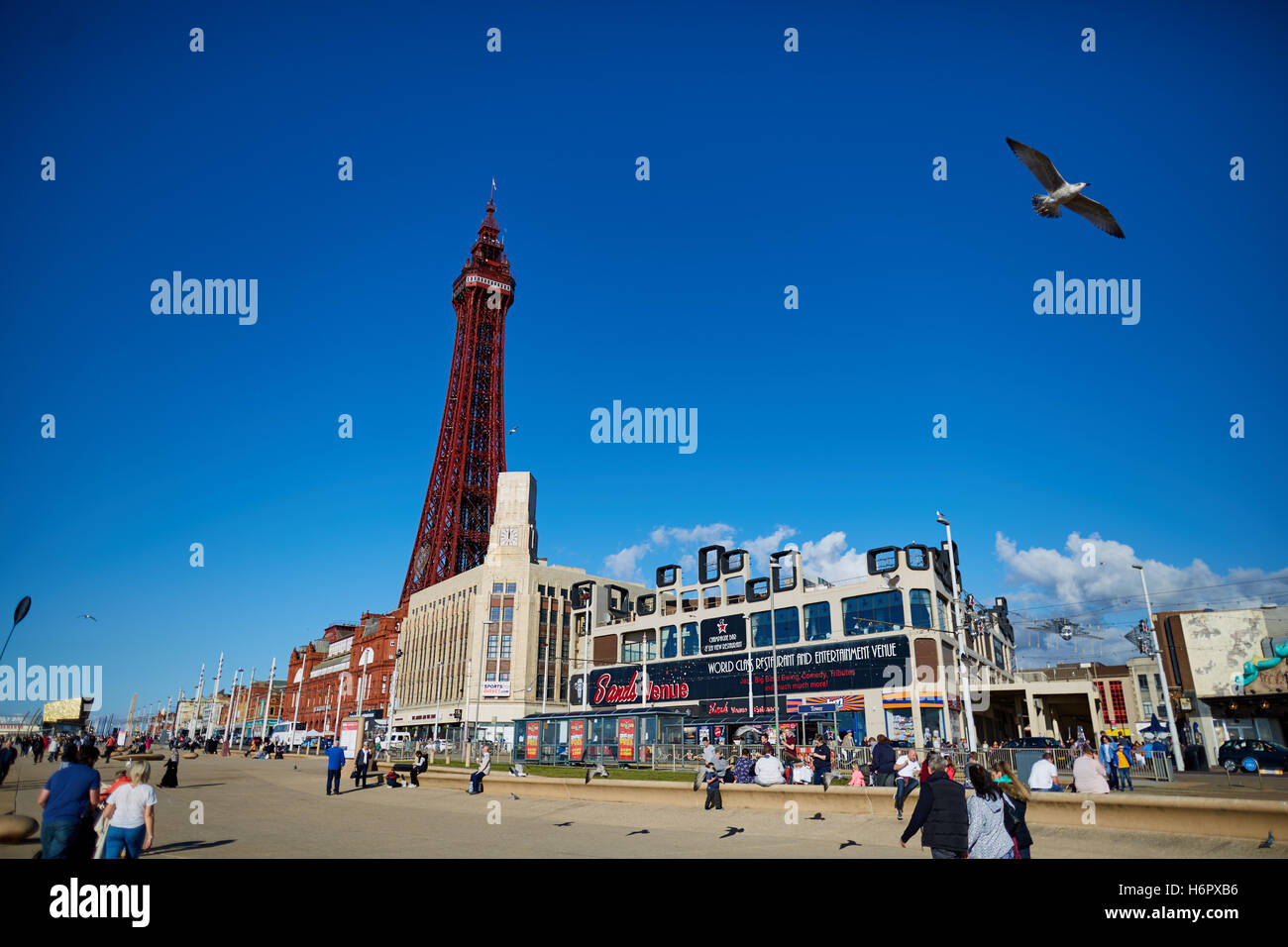 Blackpool golden mile sea front tower  Holiday sea side town resort Lancashire tourist attractions  tower copyspace - Stock Image