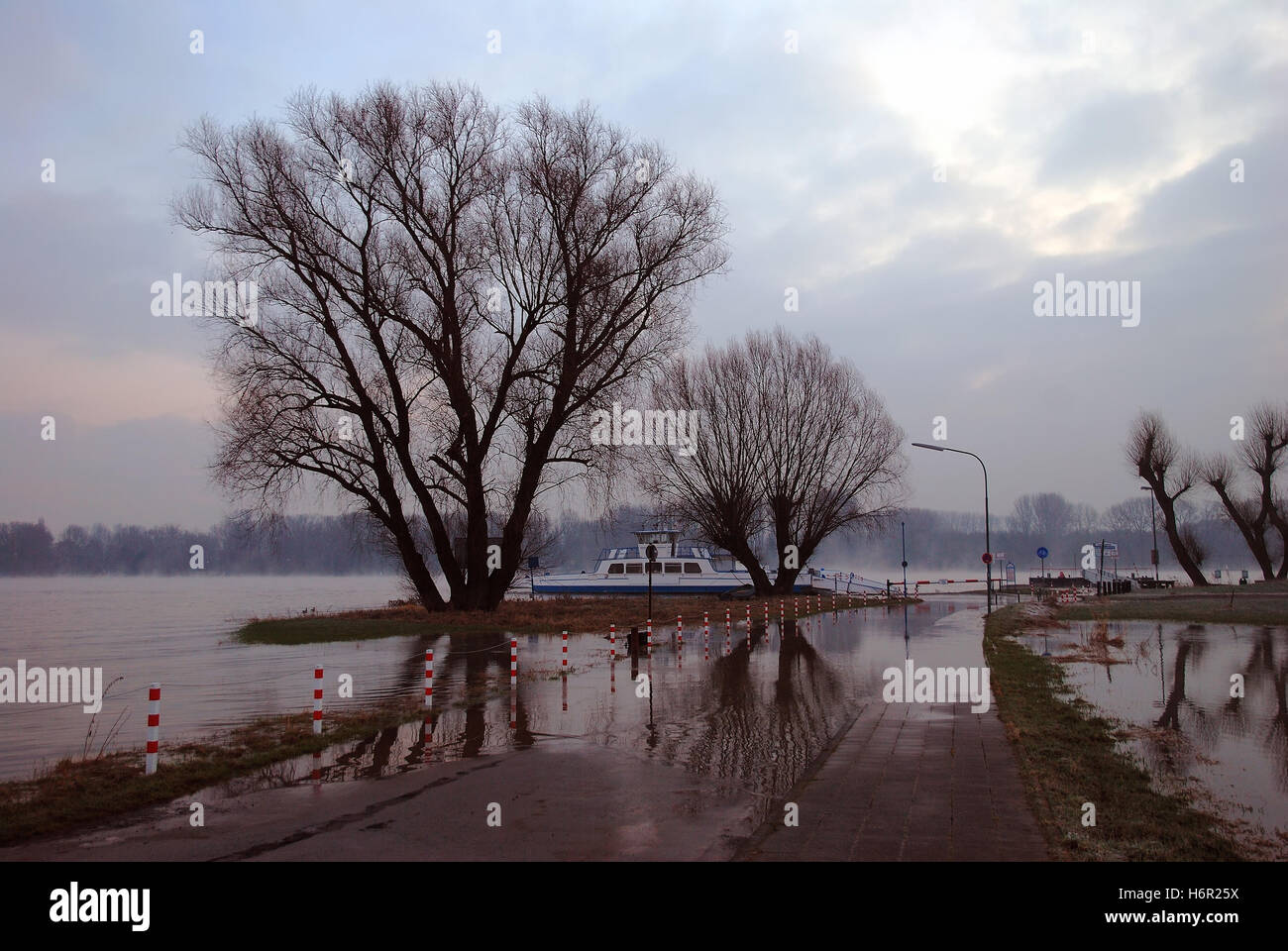 flooding on the lower rhine - Stock Image