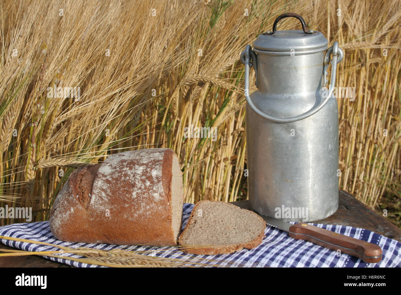 picnic on the sidelines with bread and milk - Stock Image