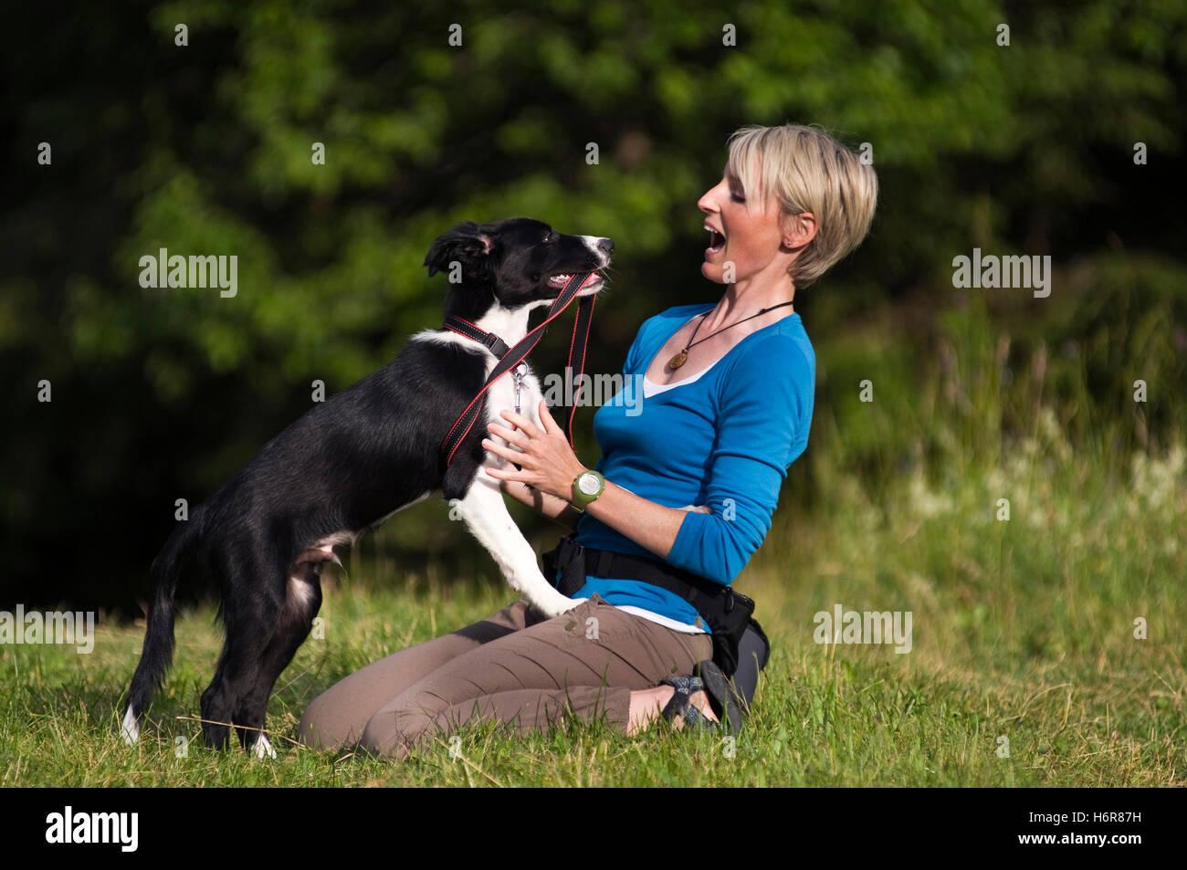 home animals - Stock Image