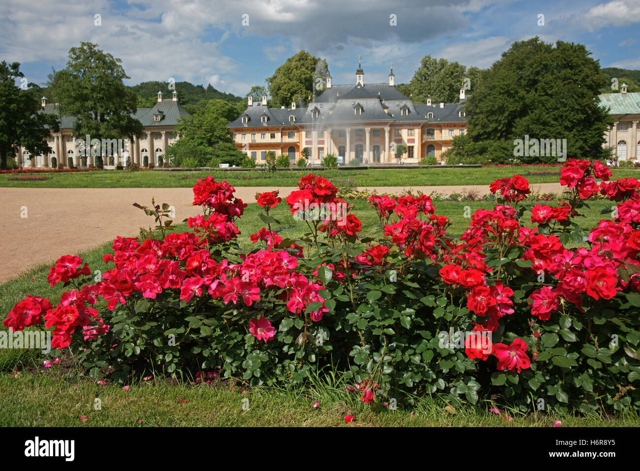 Garden Saxony Dresden Pleasure Garden Gardens Bed Of Roses House