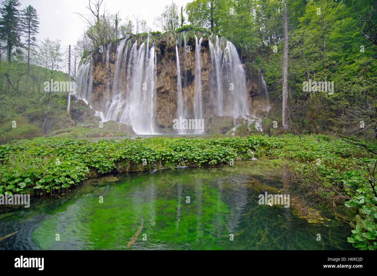 natural spectacle - plitvicka - croatia - Stock Image