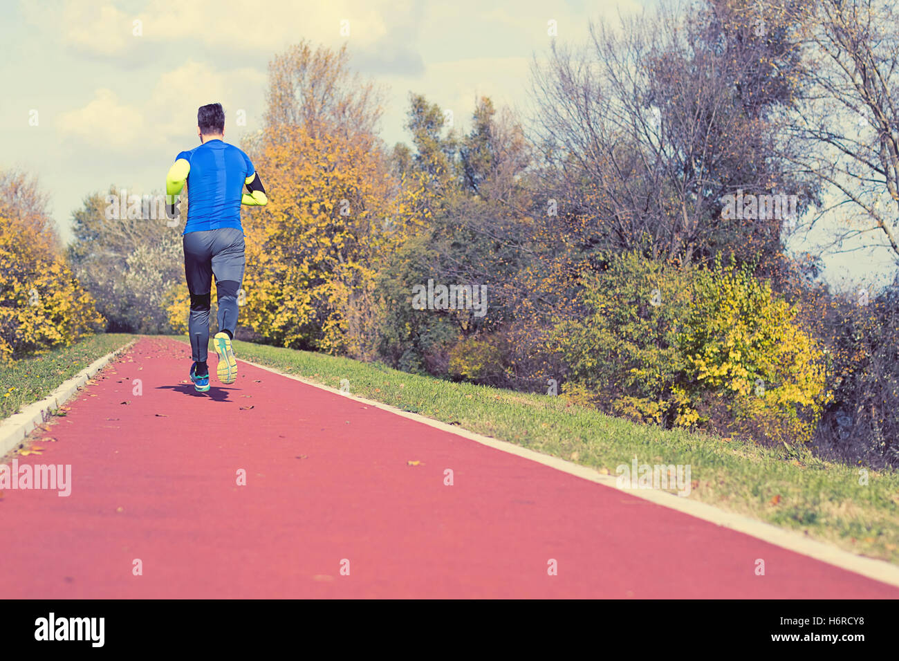 Jogging in the park Autumn Edition. Young man in sports clothing jogging in park - Stock Image