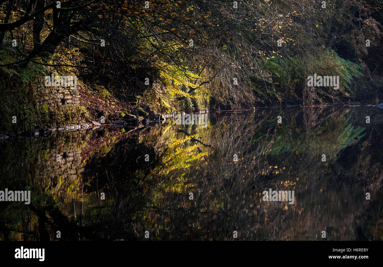 Bolton, Lancashire, UK. 31st October, 2016. The reflections in the River Croal in Bolton today, when turned 90 degrees, - Stock Image