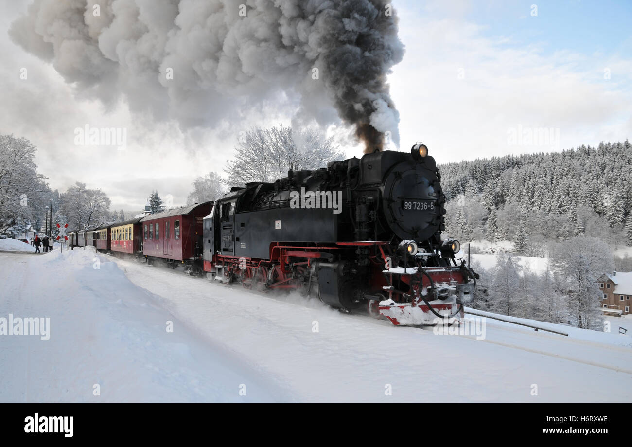 steam locomotive in custody - Stock Image