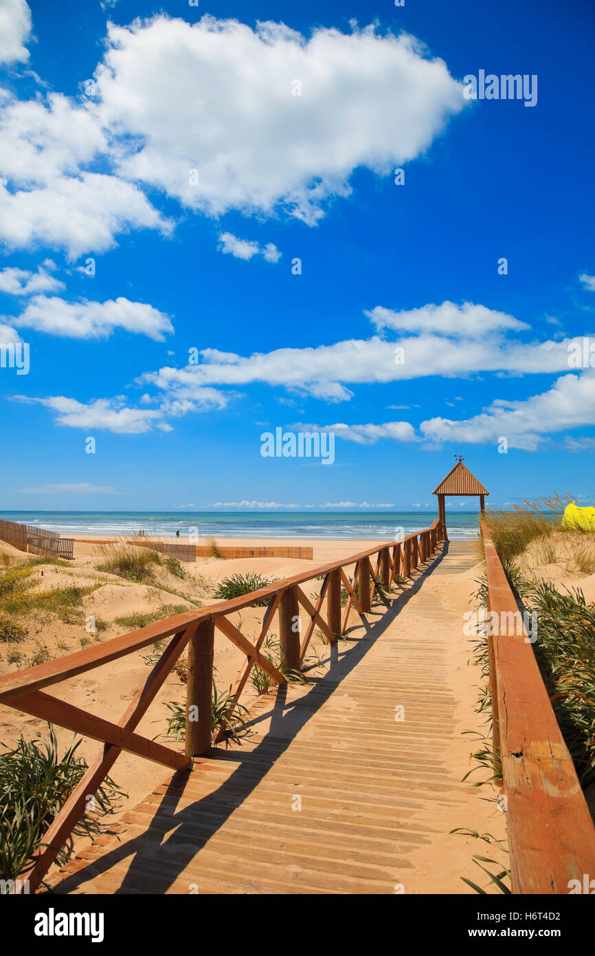blue travel colour wood cloud beach seaside the beach seashore summer summerly sunlight heat wave day during the - Stock Image