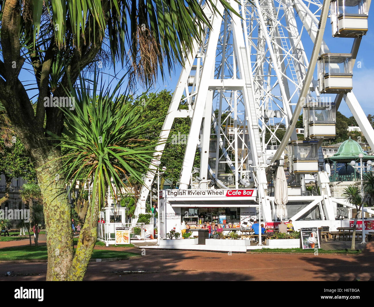 The Riviera Wheel and Cafe behind a Torbay palm tree on a sunny day in Torquay, Devon UK. - Stock Image