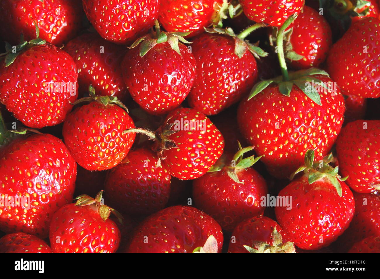 soft spring bouncing bounces hop skipping frisks jumping jump fruit strawberry juicy red food aliment health eco - Stock Image