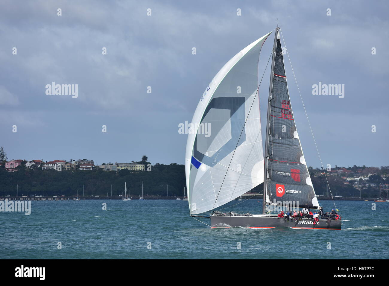 Sailing Auckland waters between Devonport and the East Coast Bays. - Stock Image
