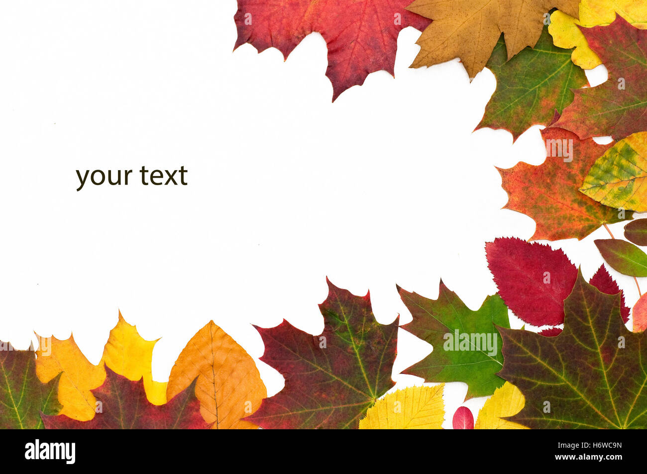 autumnal yourtext - Stock Image