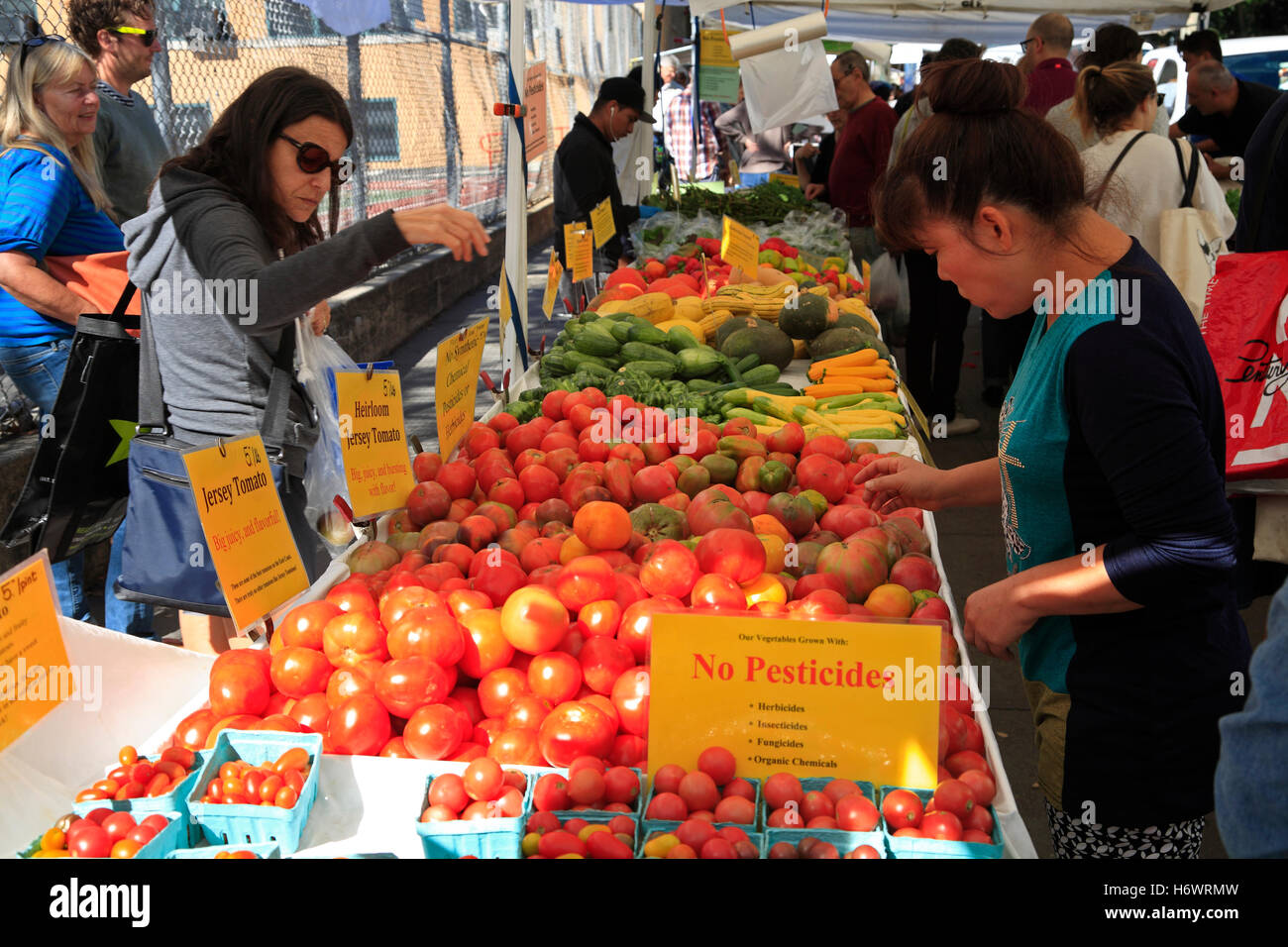 Market at Carroll Park, Brooklyn, New York, USA - Stock Image