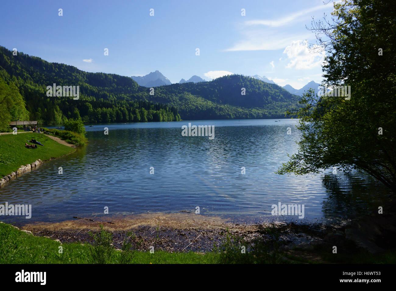 Alpsee, Alp Lake, at Neuschwanstein, Allgäu, Bavaria, Germany - Stock Image