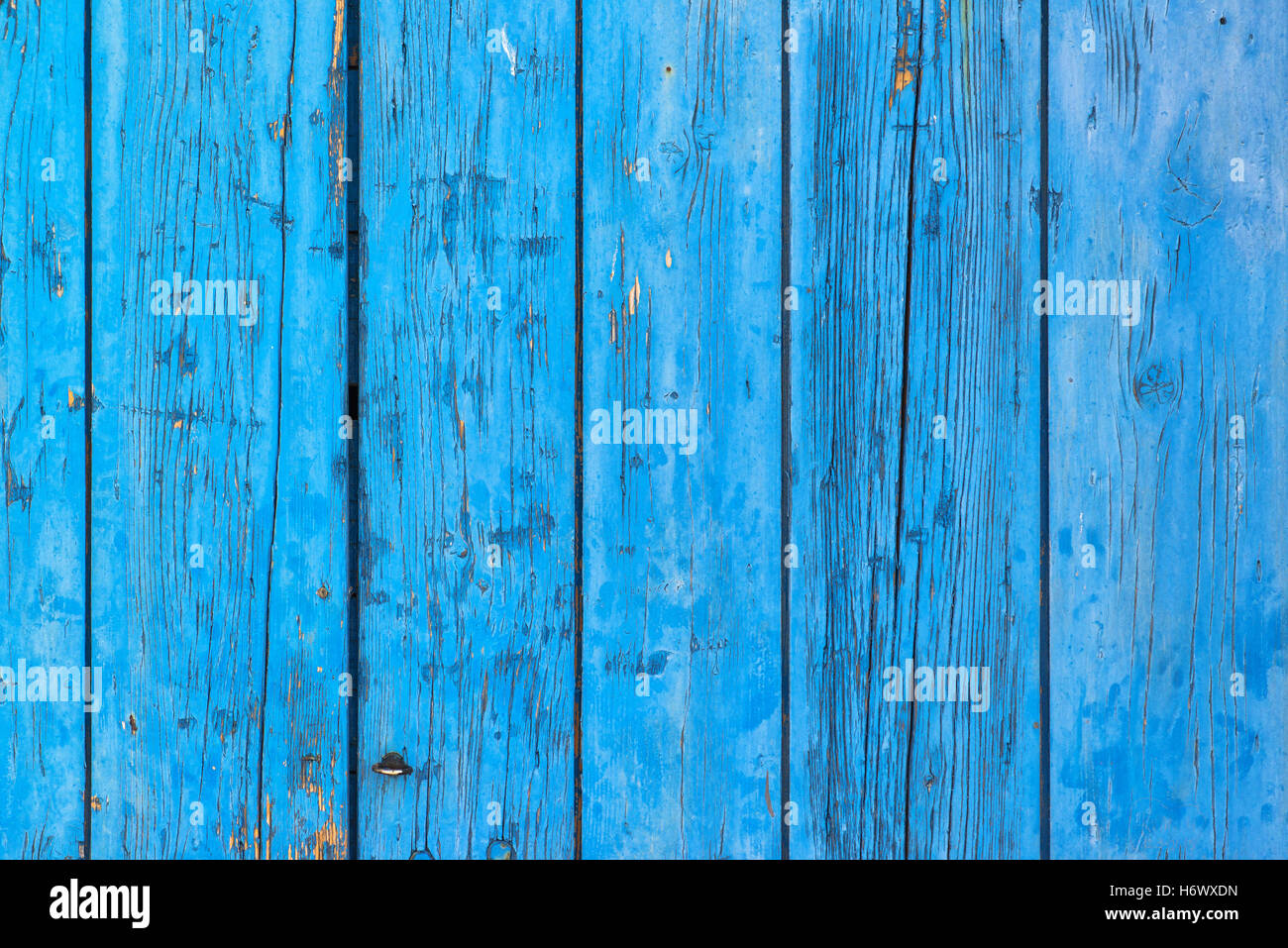 Rustic blue planks surface, old wooden boards with paint peeling off - Stock Image