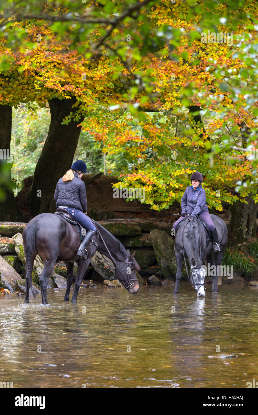 Autumn at Tarr Steps clapper bridge crossing the River Barle, Exmoor National Park, Somerset, England, UK - Stock Image