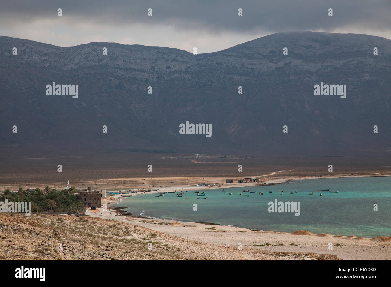Seaside of Socotra in Yemen - Stock Image