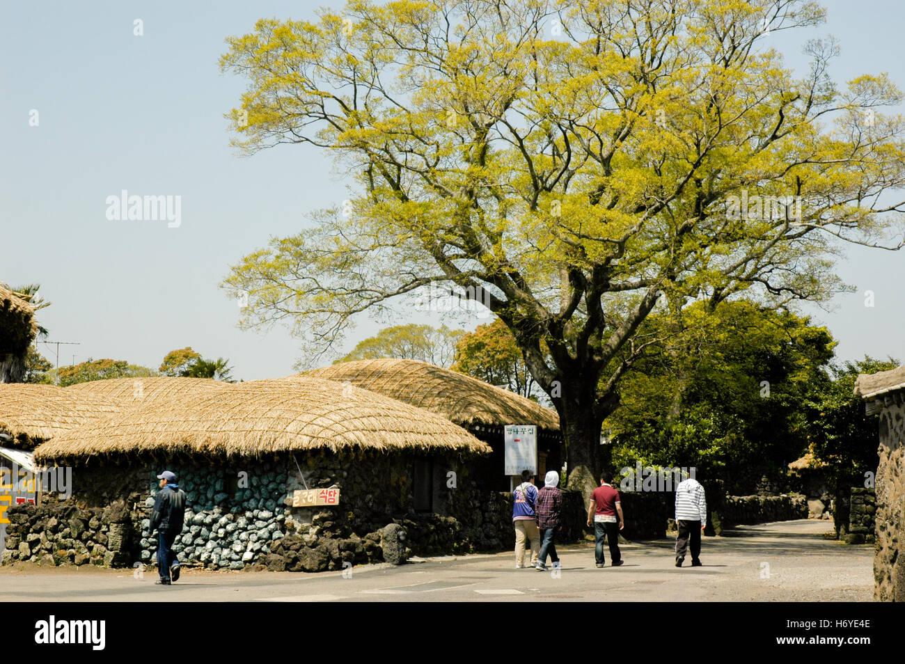 seongeup folk village. jeju. sth korea - Stock Image