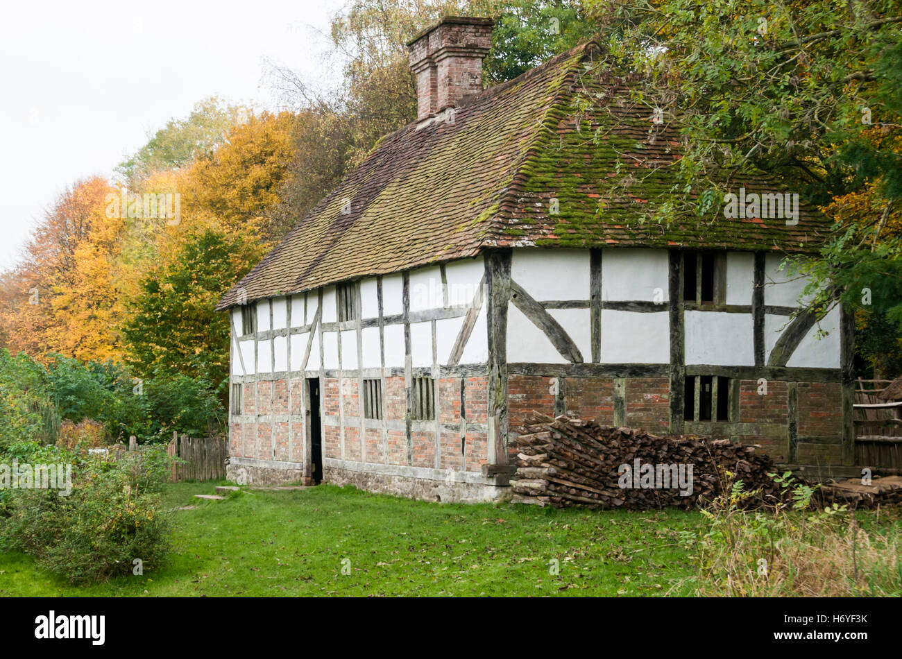 Pendean, a 17th century yeoman's house from West Lavington at the Weald and Downland Open Air Museum, Singleton, - Stock Image