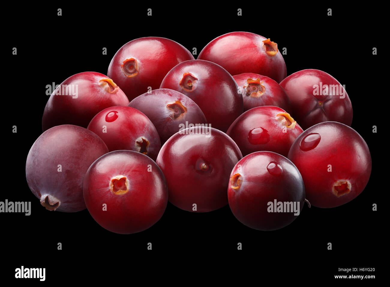 Pile of cranberries (Vaccinium oxycoccus), superpositioned, light brushed, shadowless. Clipping paths - Stock Image