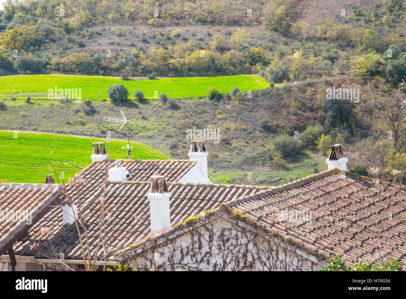 Tiled roofs and chimneys. Olmeda de las Fuentes, Madrid province, Spain. - Stock Image