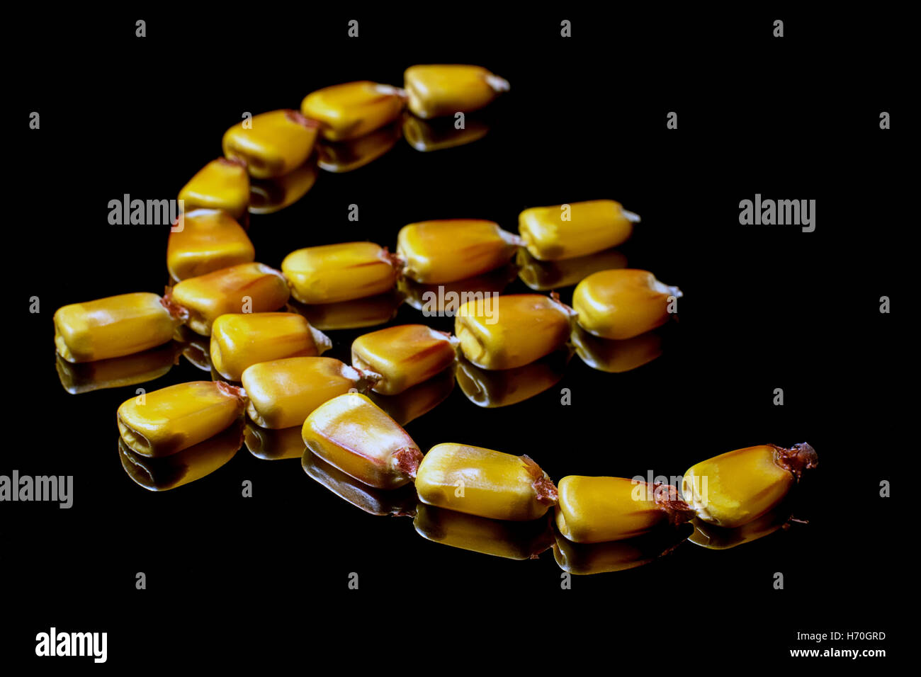 Corn kernels forming Euro symbol. Corn market. Corn kernels. Selective focus and shallow Depth of field - Stock Image