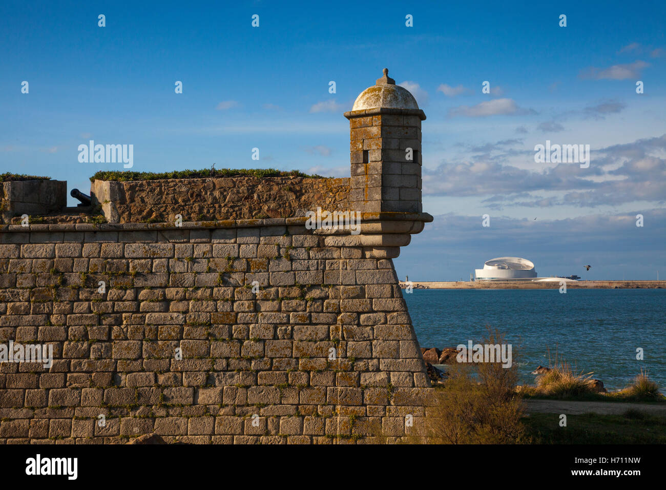 The Forte de Sao Francisco Xavier fort from 1832, Porto, UNESCO site, Portugal, Europe Stock Photo
