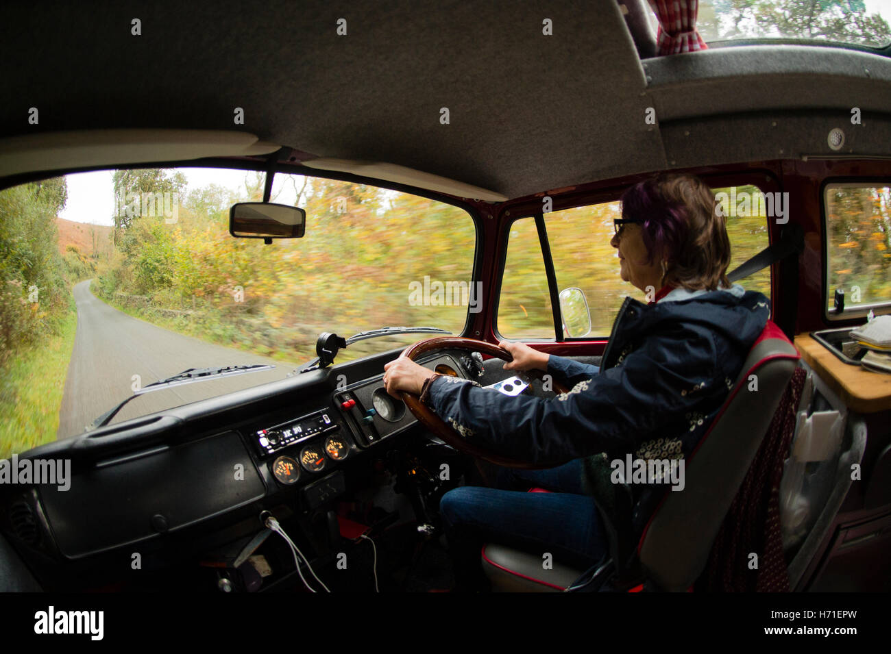 Vacations in north Wales: A middle aged woman driving her classic VW volkswagen T2 campervan along a narrow lane - Stock Image