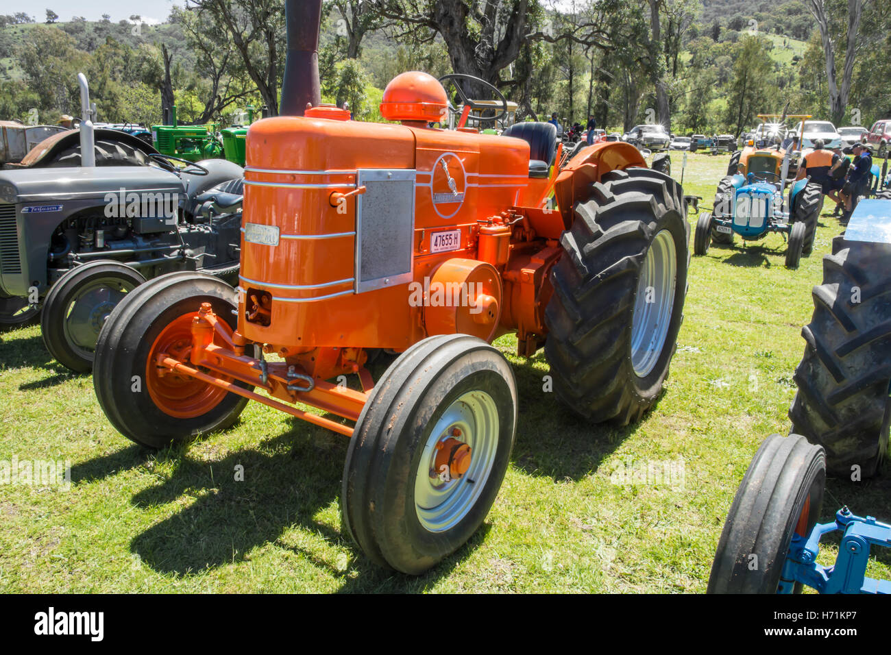 1954 Field Marshall Series 3A Single Cylinder 2 stroke Diesel  Tractor Stock Photo
