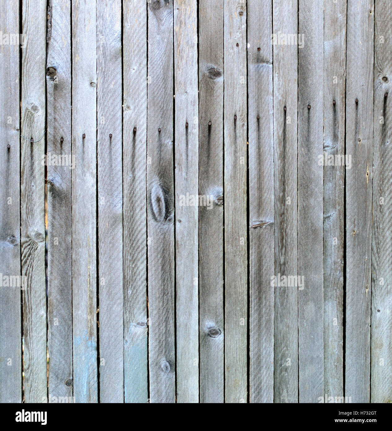 wooden planks - Stock Image