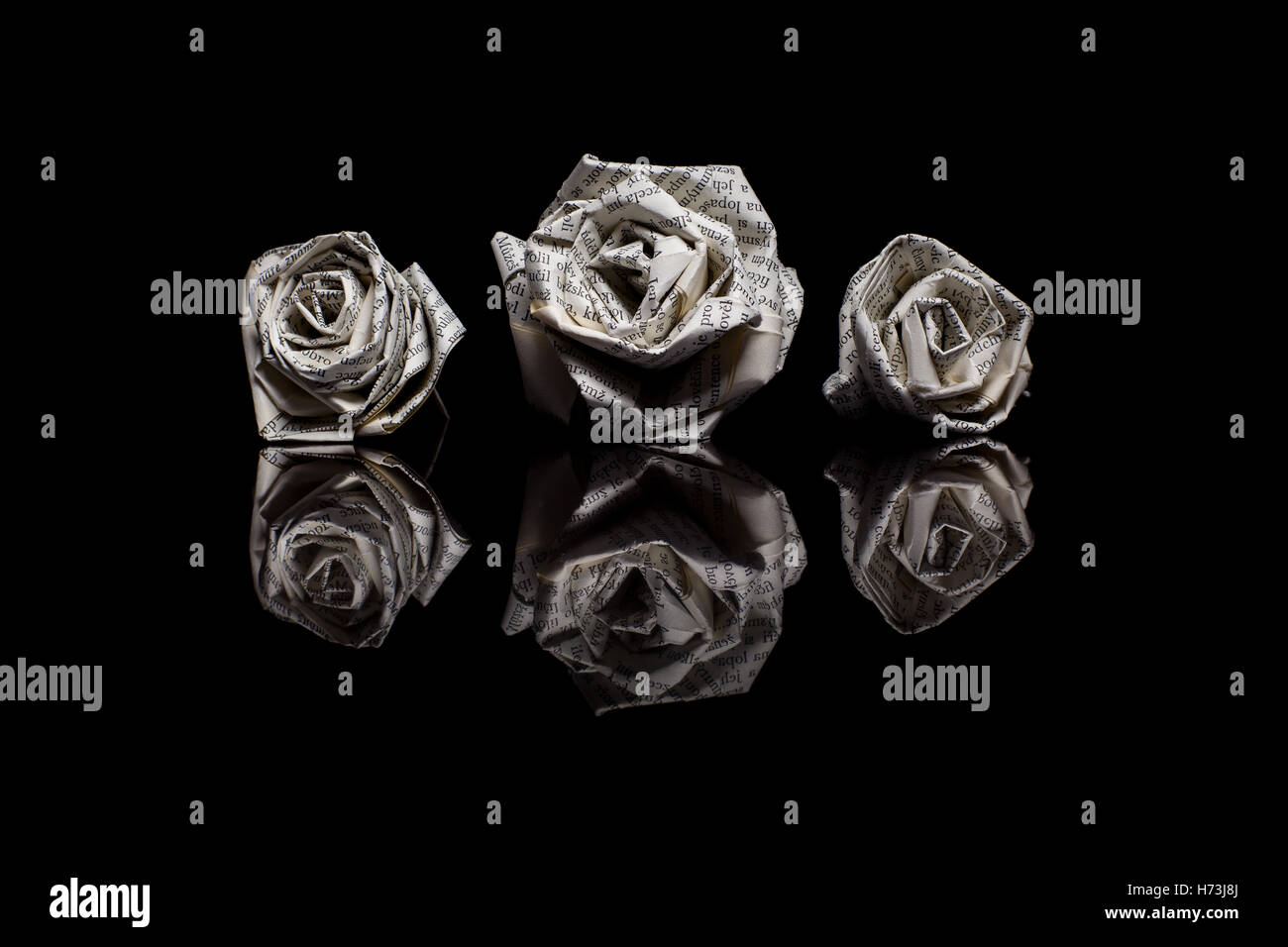 Three paper roses made from book pages isolated on black reflective three paper roses made from book pages isolated on black reflective background mightylinksfo
