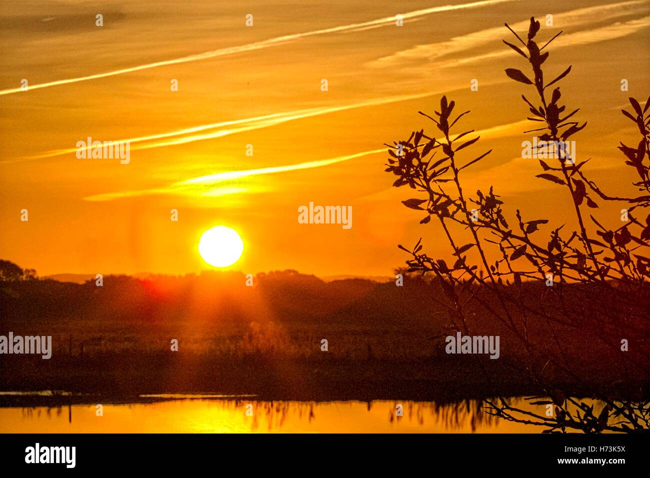 Sunrise over Croston, Lancashire: UK Weather.  01/11/2016.  After a bitterly cold night with a touch of ground frost - Stock Image